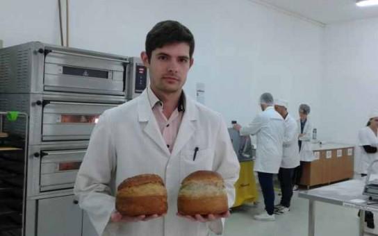 paine din canepa