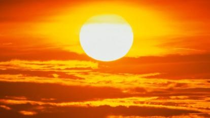 Ziua Mondiala a Soarelui - foto - stiri.tvr.ro