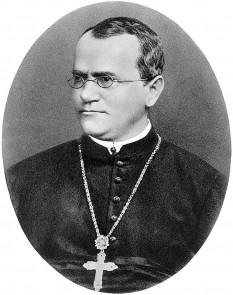 Gregor Johann Mendel (n. 22 iulie 1822 - d.06.01.1884) genetician, calugar si botanist austriac. A descoperit legile eredităţii în 1865 - foto - en.wikipedia.org