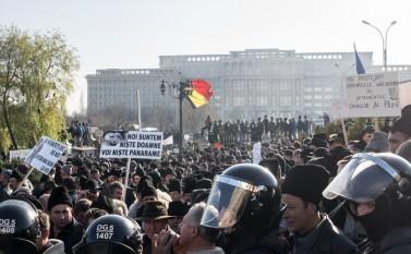15 decembrie 2015 : Palatul Parlamentului - Protestul oierilor pentru suspendarea legii vânătorii - foto: epochtimes-romania.com