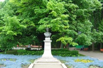 Teiul lui Eminescu este un tei argintiu (Tilia tomentosa Moench) cu o vârstă de aproximativ 500 de ani, aflat în Parcul Copou din Iași. Arborele, asociat istoric cu poetul Mihai Eminescu, reprezintă unul dintre cei mai importanți arbori monument din România și constituie un simbol pentru orașul Iași - foto: ro.wikipedia.org