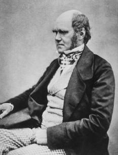 Charles Darwin (n. 12 februarie 1809, Shrewsbury, Shropshire - d. 19 aprilie 1882, Down, lângă Beckenham, Kent) este cel mai celebru naturalist britanic, geolog, biolog și autor de cărți, fondatorul teoriei referitoare la evoluția speciilor (teoria evoluționistă) - foto preluat de pe ro.wikipedia.org