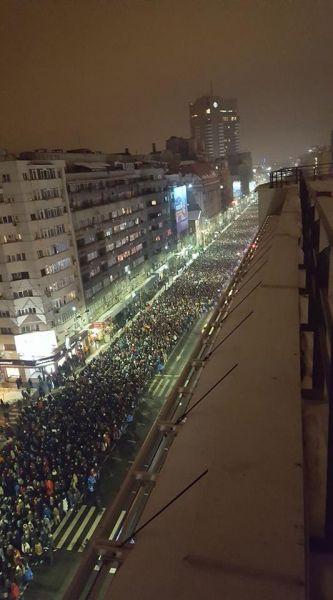"""Protest """"NU Legii Gratierii Si Amnistiei"""",  (București - 22 ianuarie 2017) - foto: Irina Barla"""