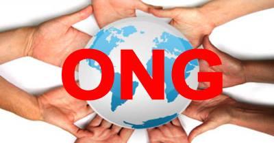 Conturarea unei rețele permanente de ONG-uri - foto: facebook.com