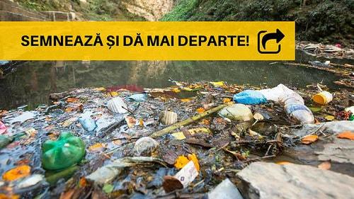 Să oprim potopul de plastic! - foto: de-clic.ro