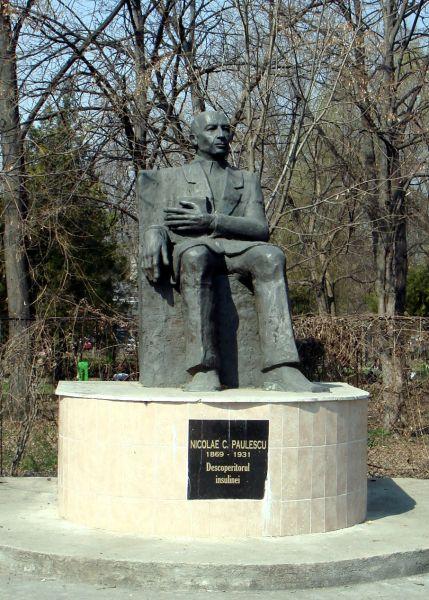 Statuia lui Nicolae Paulescu, de lângă Facultatea de Medicină din Bucureşti, dezvelită la 31 august 2001, în prezenţa preşedintelui Federaţiei Internaţionale de Diabet, Sir George Alberti - foto preluat de pe ro.wikipedia.org