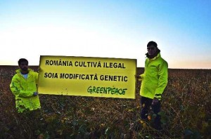 Greenpeace_soia_1_res