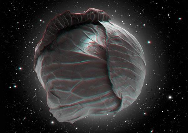 Vita-de-Vie-Cover-ACUSTIC-Cabbage-3D