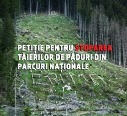 Stop tăierilor de pădure din parcuri naționale