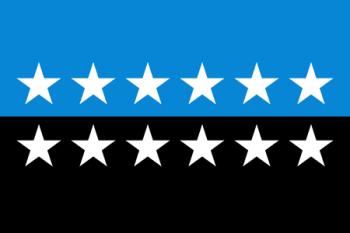 Drapelul Comunitatății Europene a Cărbunelui și Oțelului - foto: ro.wikipedia.org