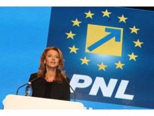 Alina-Ștefania Gorghiu (n. 16 septembrie 1978, Tecuci), este un avocat și om politic român, copreședinte al Partidului Național Liberal. Până în anul 2004 a îndeplinit funcția de consilier local pentru București, sector 5. La alegerile legislative din 2008 a obținut un loc de parlamentar în Camera Deputaților în colegiul 22 din București. La alegerile din 9 decembrie 2012 a obținut un nou mandat în Parlament, fiind reprezentant al colegiului uninominal 22, București. La 18 decembrie 2014 a fost aleasă președinte al Partidului Național Liberal
