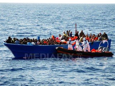 imigranti-mediafax