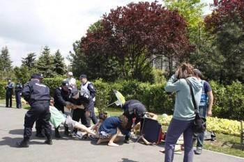 Comunicat - Cu șezlongu' la Guvern de 1 Mai - foto - militiaspirituala.ro