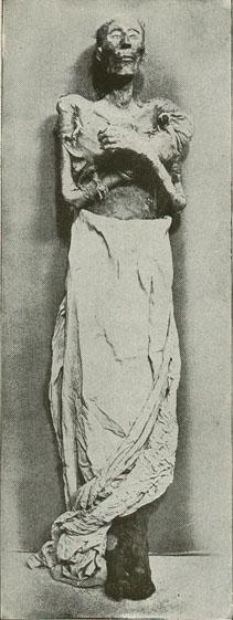 Mumia - foto - ro.wikipedia.org
