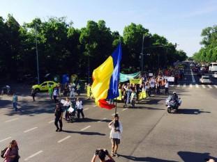 Protest impotriva defrisarilor - foto preluat de pe romaniacurata.ro