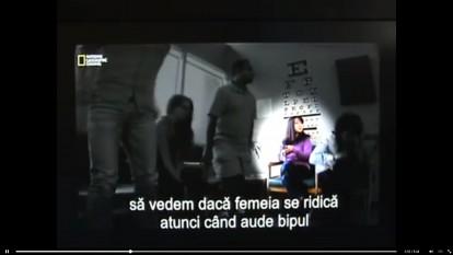 Spiritul de turmă - foto captura video - facebook.com