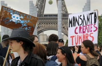 Protest împotriva produselor modificate genetic -  foto - presalibera.net