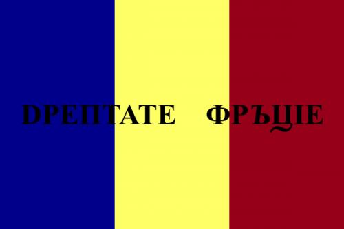 Varianta finală a steagului revoluţionar - foto: ro.wikipedia.org