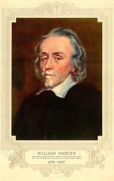 William Harvey (n.1 aprilie 1578 – d. 3 iunie 1657) medic englez, celebru pentru faptul că a elaborat teoria exactă a circulației sanguine -  foto - ro.wikipedia.org