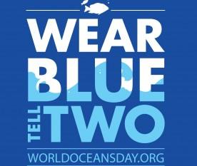 Ziua Mondială a Oceanelor - foto - stiri.tvr.ro (facebook)