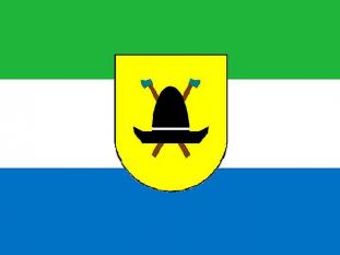 Drapelul Regatului Valahiei - foto - cubreacov.wordpress.com