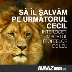 foto - secure.avaaz.org