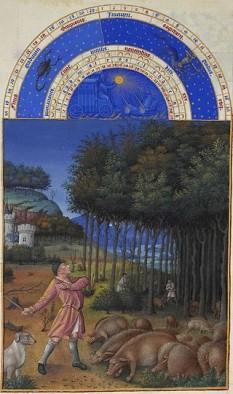 Noiembrie în Les Très Riches Heures du duc de Berry foto: ro.wikipedia.org