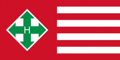 Steagul Partidului Crucilor cu Săgeți - foto: ro.wikipedia.org