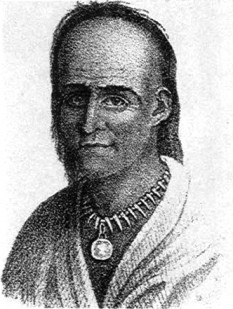 Little Turtle, or Michikinikwa (in Miami-Illinois) (c. 1747 – July 14, 1812), was a chief of the Miami people, and one of the most famous Native American military leaders of his time. foto (This lithograph of Little Turtle is reputedly based upon a lost portrait by Gilbert Stuart, destroyed when the British burned Washington, D.C. in 1814): en.wikipedia.org