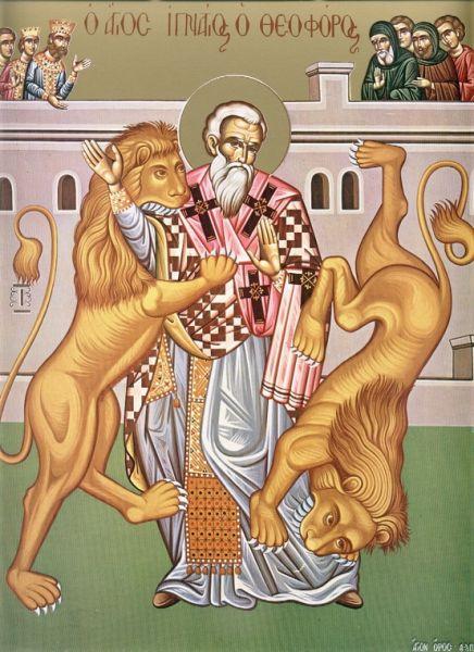Sfântul sfințit mucenic Ignatie Teoforul a fost al treilea episcop al Antiohiei [1] (în Siria), după Apostolul Petru și Evod (prăznuit la 7 septembrie), căruia i-a urmat în scaun pe la anul 68. A murit în anul 107 în timpul unei persecuții împotriva creștinilor din vremea împăratului Traian. Prăznuirea lui principală este la 20 decembrie, iar la 29 ianuarie se face pomenire, în calendarul ortodox, pentru aducerea moaștelor sale de la Roma la Antiohia  - foto: doxologia.ro