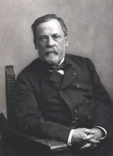 Louis Pasteur (n. 27 decembrie 1822, Dole — d. 28 septembrie 1895, Marnes-la-Coquette), om de știință francez, pionier în domeniul microbiologiei - foto: ro.wikipedia.org