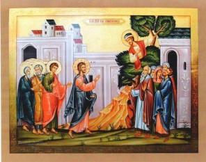 Predică la Duminica a XXXII-a după Rusalii - a lui Zaheu Vameșul - foto: doxologia.ro