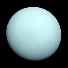 Uranus este a șaptea planetă de la Soare și a treia că mărime (după diametru). Uranus este mai mare ca diametru însă mai mică sub aspectul masei decât Neptun. Plasat pe o orbită de 19 ori mai îndepărtată de Soare decât cea a Pământului, Uranus, ca și Neptun, primește foarte puțină căldură. Cu un diametru de 52.000 km, Uranus este de 2 ori mai mic decât Saturn, dar de 5 ori mai mare decât Terra (Pământul). Este înconjurat de inele întunecate și are 27 sateliți - in imagine, Uranus se înfățișează ca un disc lipsit de trăsaturi în această poză facută de Voyager 2 în 1986 - foto: ro.wikipedia.org