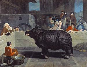 14 aprilie 1758: Rinocerul Clara, care timp de 17 ani a făcut turul Europei, moare la Londra. Acesta este primul rinocer care a făcut demonstrații în captivitate - foto: ro.wikipedia.org