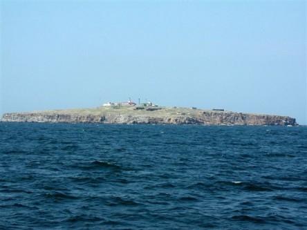 Insula Șerpilor văzută din larg - foto: ro.wikipedia.org