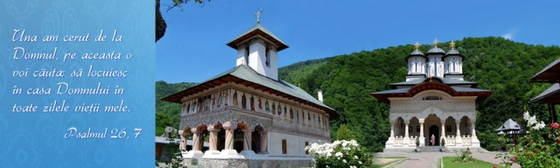 Mănăstirea Lainici - foto: manastirealainici.ro
