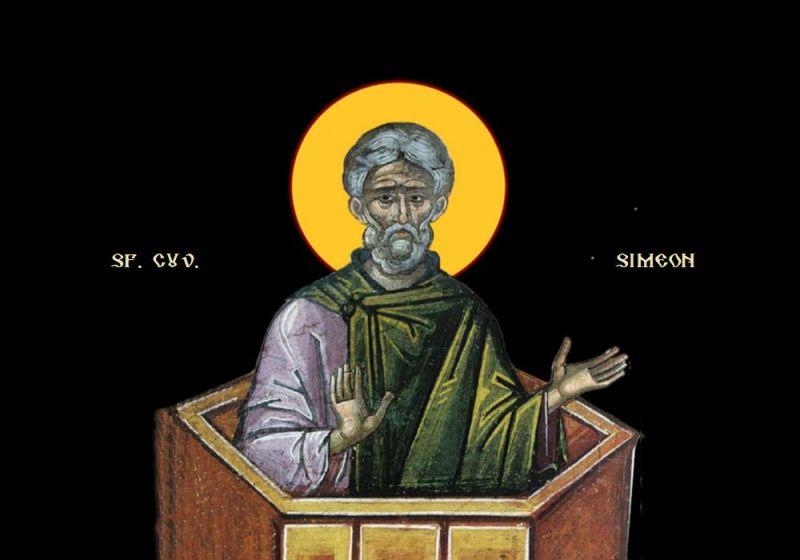 Sfântul Cuvios Simeon cel din Muntele Minunat - foto preluat de pe ziarullumina.ro