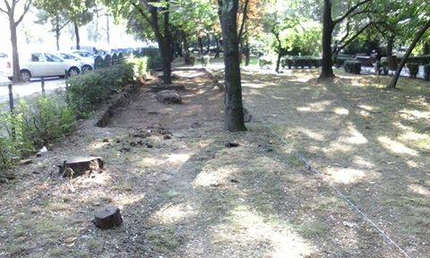 Stop betonarii spatiilor verzi - foto: facebook.com