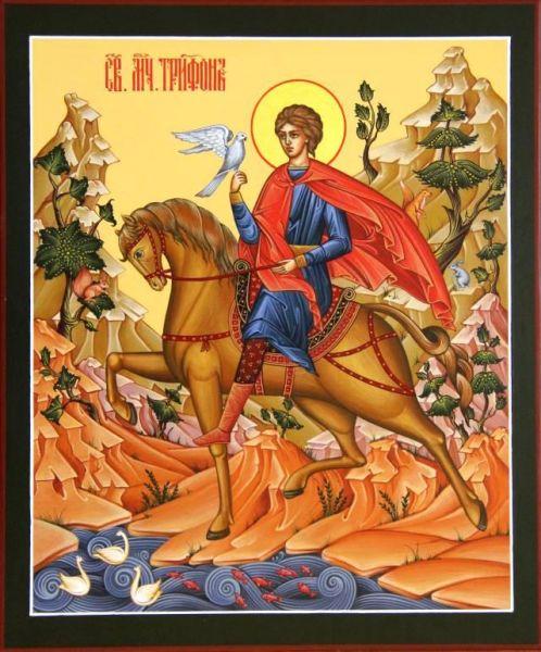 Sfântul Mucenic și făcător de minuni Trifon a trăit în secolul al III-lea (n. 232 d.Hr. - d. 250 d.Hr). A pătimit în timpul persecuției creștinilor ordonate de împăratul Decius. A primit moarte mucenicească în anul 250, prin tăierea capului, răbdând mai înainte multe alte chinuri. Este considerat ca fiind ocrotitor al grădinilor, al livezilor și al păsărilor, și ca fiind cel ce poate îndepărta insectele dăunătoare și păzi lanurile de secetă și grindină. Prăznuirea sa în Biserica Ortodoxă se face la 1 februarie si 29 septembrie- foto: doxologia.ro