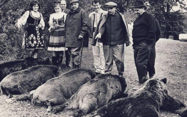 """Ceausescu la """"Vanatoare Bistrita Septembrie 1972"""" - foto: """"Fototeca online a comunismului românesc"""""""