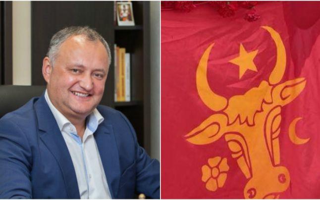 gor Dodon şi simbolul nostru românesc: capul de bour, privit frontal, simbolizând puterea - foto preluat de pe adevarul.ro