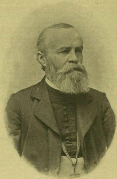 Iosif (Ioan) Goldiş (n. 17 februarie 1836, Socodor, Arad - d. 23 martie 1902, Arad) a fost un episcop român, membru corespondent (1882) al Academiei Române - foto preluat de pe ro.wikipedia.org