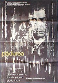 """Pădurea spânzuraților este o ecranizare din 1964 a romanului omonim al scriitorului român Liviu Rebreanu. Regizat de Liviu Ciulei, a fost primul film românesc care a obținut o largă recunoaștere internațională. În anul 1966 a câștigat categoria """"Première Oeuvre"""" a festivalului de film de la Cannes - foto preluat de pe ro.wikipedia.org"""