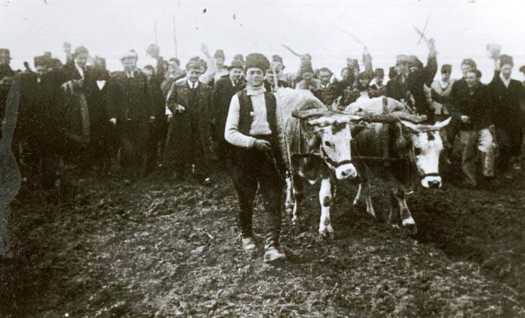 """Aspect de la reforma agrară, februarie 1945.(martie 1945) - sursa – """"Fototeca online a comunismului românesc"""", Cota: 9/1945"""