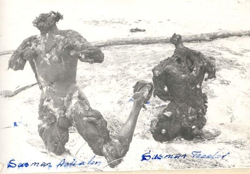 Corpurile carbonizate ale fratilor Teodor si Avisalon Susman, fotografie realizata de Securitate (1/2 februarie 1958) - foto preluat de pe www.memorialsighet.ro